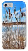 Winter In The Salt Marsh IPhone Case by Catherine Reusch Daley