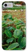 Yams Farm In Azores IPhone Case