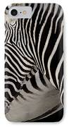 Zebra Head IPhone Case by Carlos Caetano