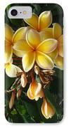 Aztec Gold Plumeria IPhone Case