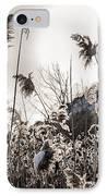 Backlit Winter Reeds IPhone Case