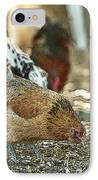 Hens Scratching Around IPhone Case