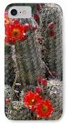 New Mexico Cactus IPhone Case