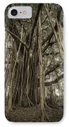 Old Banyan Tree IPhone Case