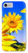 Summertime Sunflowers IPhone Case
