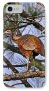 Turkey In A Tree IPhone Case