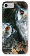 White Faced Scops Owl IPhone Case