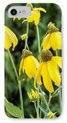 Yellow Cone Flowers Rudbeckia IPhone Case