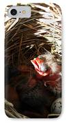 Red-winged Blackbird Babies And Egg IPhone Case
