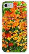 Autumn Abstract Painterly IPhone Case