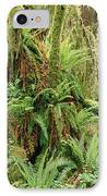 Bigleaf Maple Acer Macrophyllum Trees IPhone Case