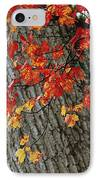 Bright Red Maple Leaves Against An Oak IPhone Case