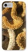 Cactus In Orange Polka Dots IPhone Case