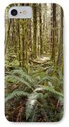 Ferns Sit On The Forest Floor IPhone Case