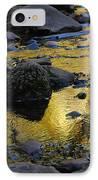 Golden Fall Reflection IPhone Case