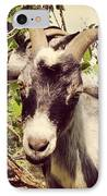 Steve My Goat IPhone Case