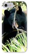 Young Black Bear IPhone Case
