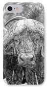 African Cape Buffalo IPhone Case