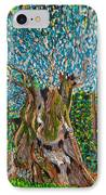 Ancient Olive Tree IPhone Case