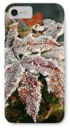 Autumn Leaves In A Frozen Winter World IPhone Case