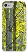 Autumn Through The Trees IPhone Case