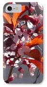 Backlit Pink Tree Blossoms IPhone Case
