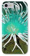 Beautiful Sea Anemone 2 IPhone Case