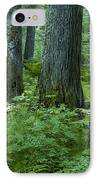 Cedar Grove IPhone Case