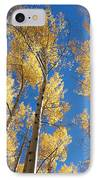 Colorado Aspen IPhone Case