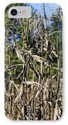 Corn Stalks Drying IPhone Case