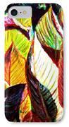 Crotons Sunlit 2 IPhone Case