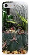 Desert Art IPhone Case