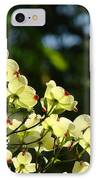 Dogwood Flowers White Dogwood Tree Flowers Art Prints Cards Baslee Troutman IPhone Case