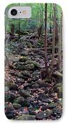 Dry River Bed- Autumn IPhone Case