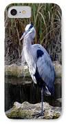 Everglades Heron IPhone Case