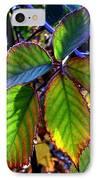 Fall Blackberry IPhone Case