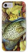 Fall Crappie IPhone Case