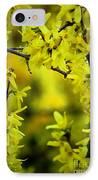 Forsythia At The Hacienda IPhone Case