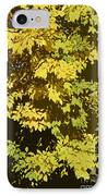 Golden Branches IPhone Case