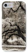 Historic Drayton Hall In Charleston South Carolina Live Oak Tree IPhone Case