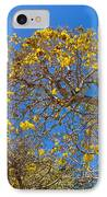 Jerusalem Thorn Tree IPhone Case