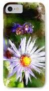 Last Rose Of Summer IPhone Case