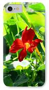 Lone Nasturtium   IPhone Case