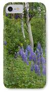 Lupine And Aspens IPhone Case