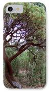 Manzanita Tree By The Road IPhone Case
