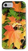 Maple Mania 10 IPhone Case