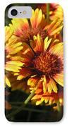 Orange And Gold  IPhone Case