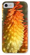 Orange And Gold Flower  IPhone Case