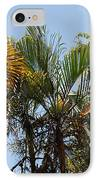 Orange Trees IPhone Case
