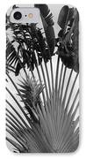 Palm Frons IPhone Case